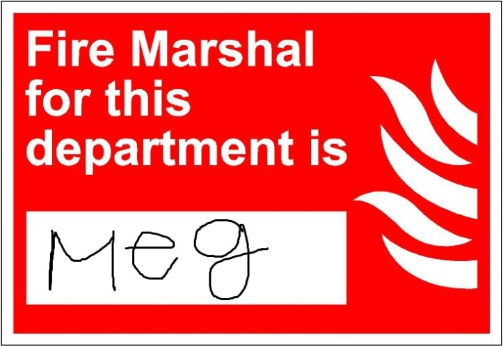 fire033 - fire marshal for this department is